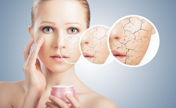 La-peau-sèche-a-besoin-du-bon-hydratant